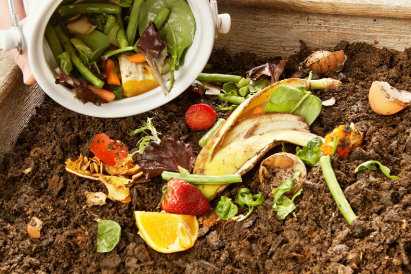 faire du composte maison Quu0027est que le compostage domestique