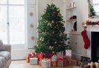 Comment choisir son sapin de Noël naturel ?