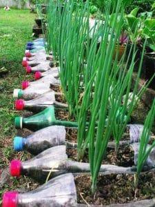 astuces journee de la terre recycler boutille plastique