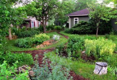 permaculture jardin