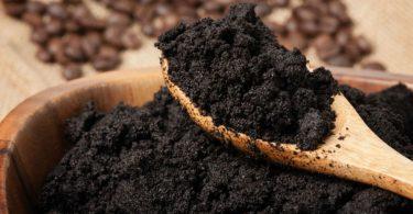 réutiliser le marc de café dans votre jardin