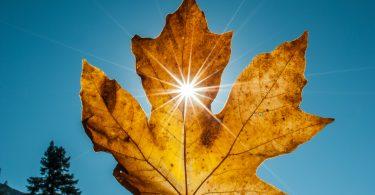 fonctionnement d'un chauffe eau solaire