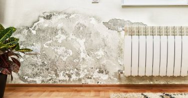 degat des eaux mur de maison