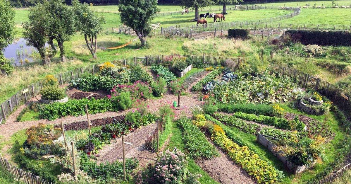 permaculture jardin 2
