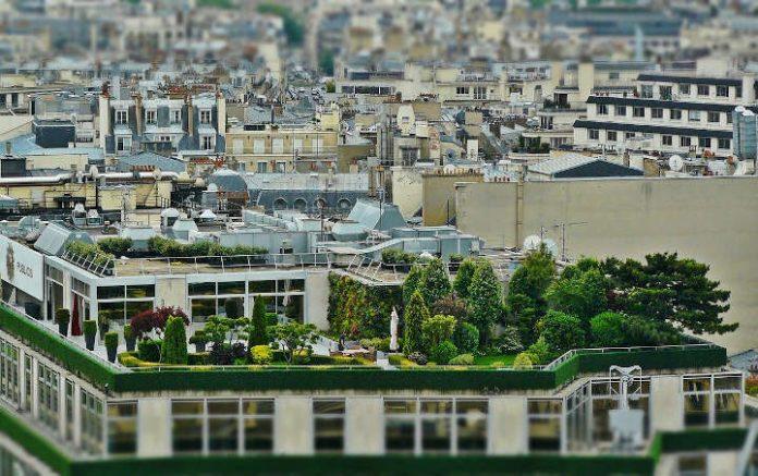 toit végétalisé - végétalisation urbaine