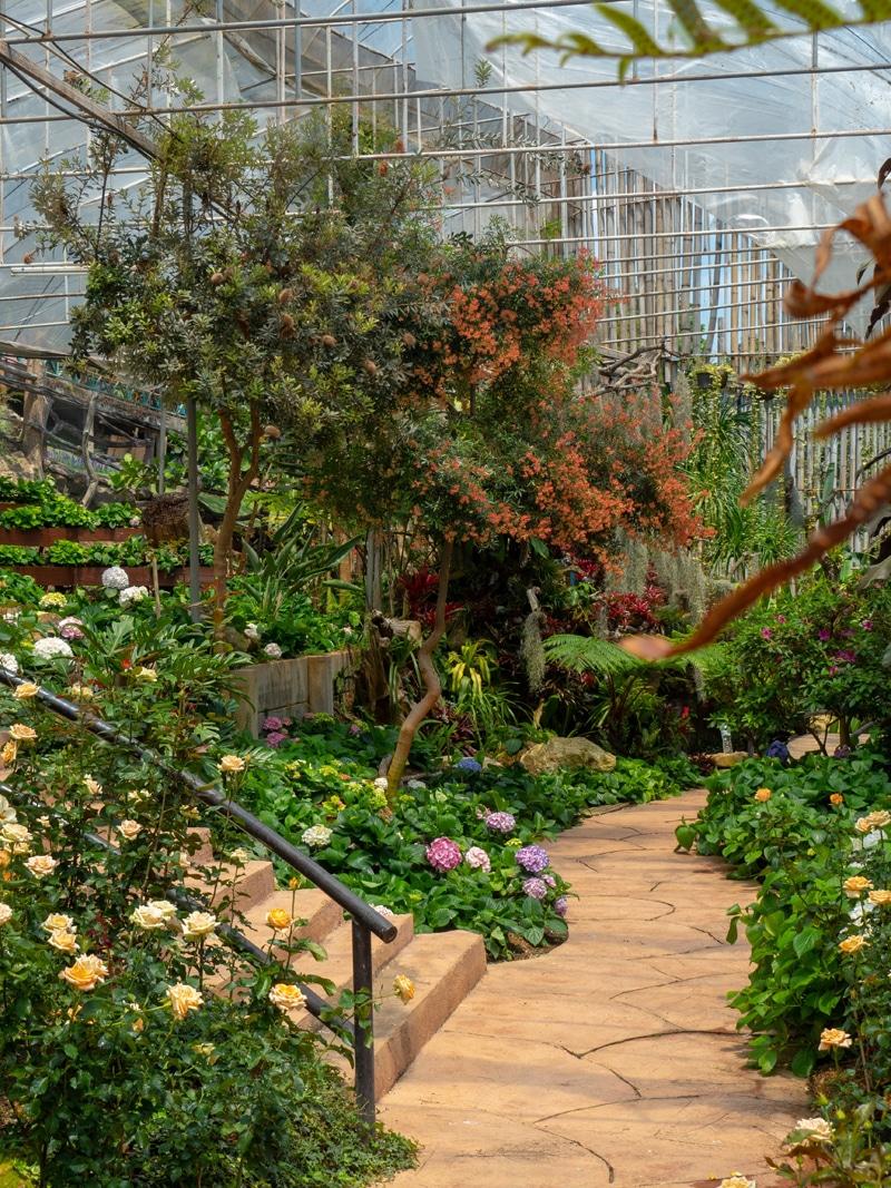 bien aménager un jardin