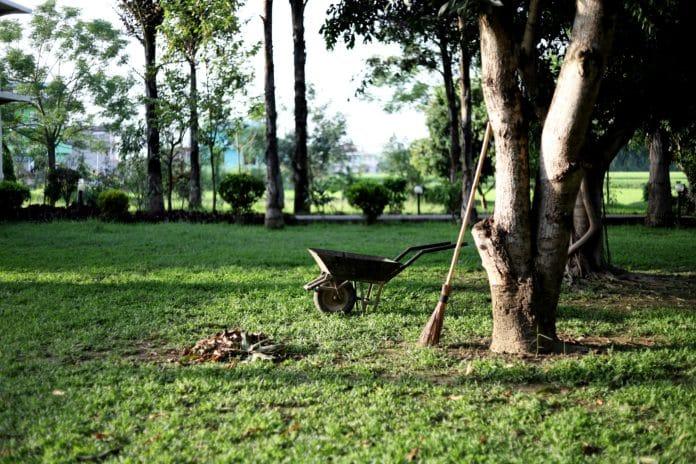 comment entretenir un grans jardin