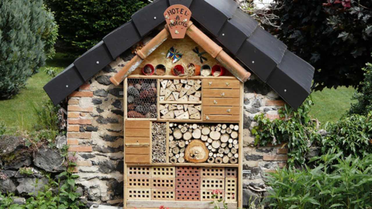 intérêts d'un abri pour insecte