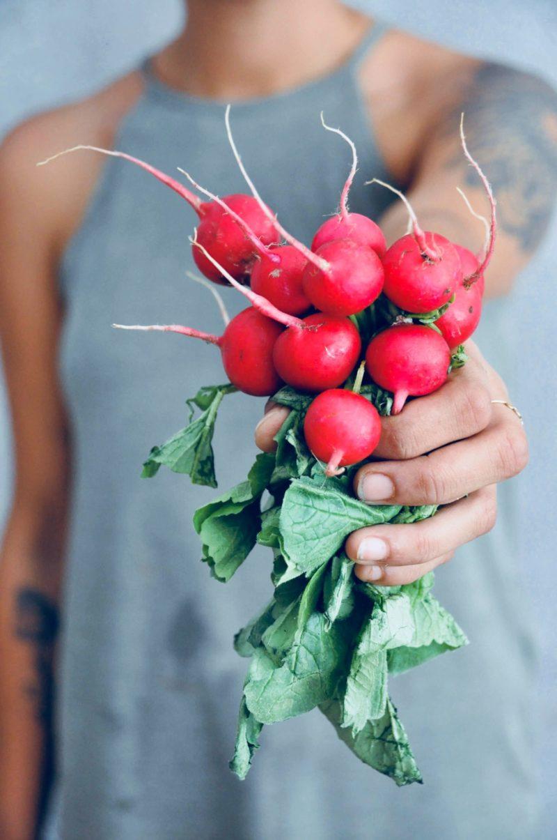 Comment bien semer des radis dans son potager ?