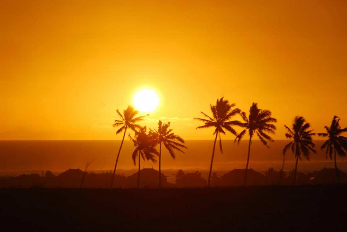 Réchauffement climatique : de plus en plus de fortes chaleurs !