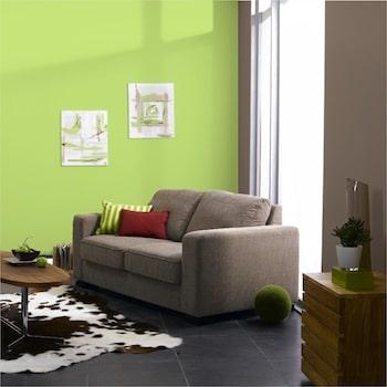 salon couleur vert et taupe