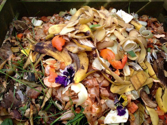 déchets composteur