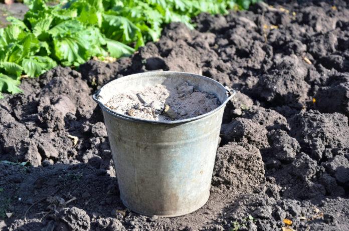 6 utilisations des cendres de bois pour son jardin