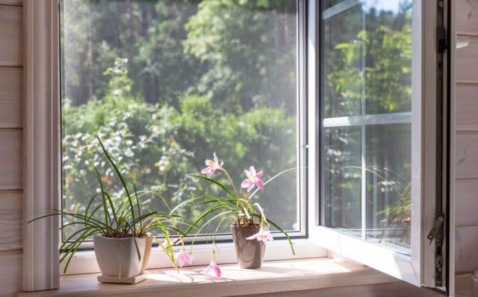 Quels aménagements et astuces pour se protéger des moustiques chez soi ?