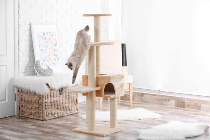 Comment fabriquer un arbre à chat?